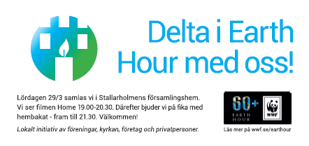 WWF Earth Hour Stallarholmen 2014