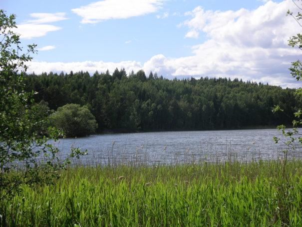 Gröndalsviken Överselö. Fotograf: Sven G Nilsson