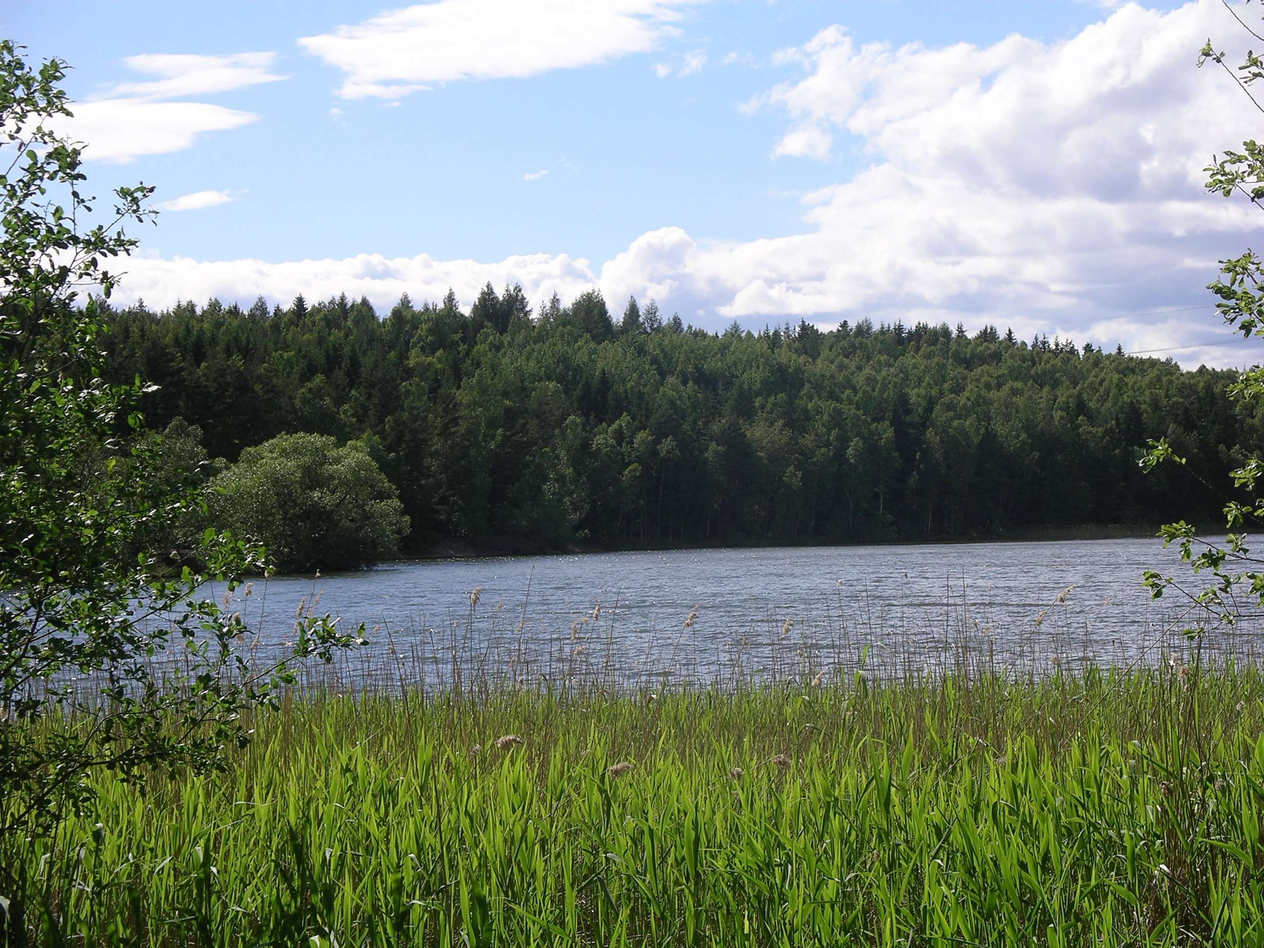 Intresset för svensk natur ökar. Gröndalsviken Överselö. Fotograf: Sven G Nilsson