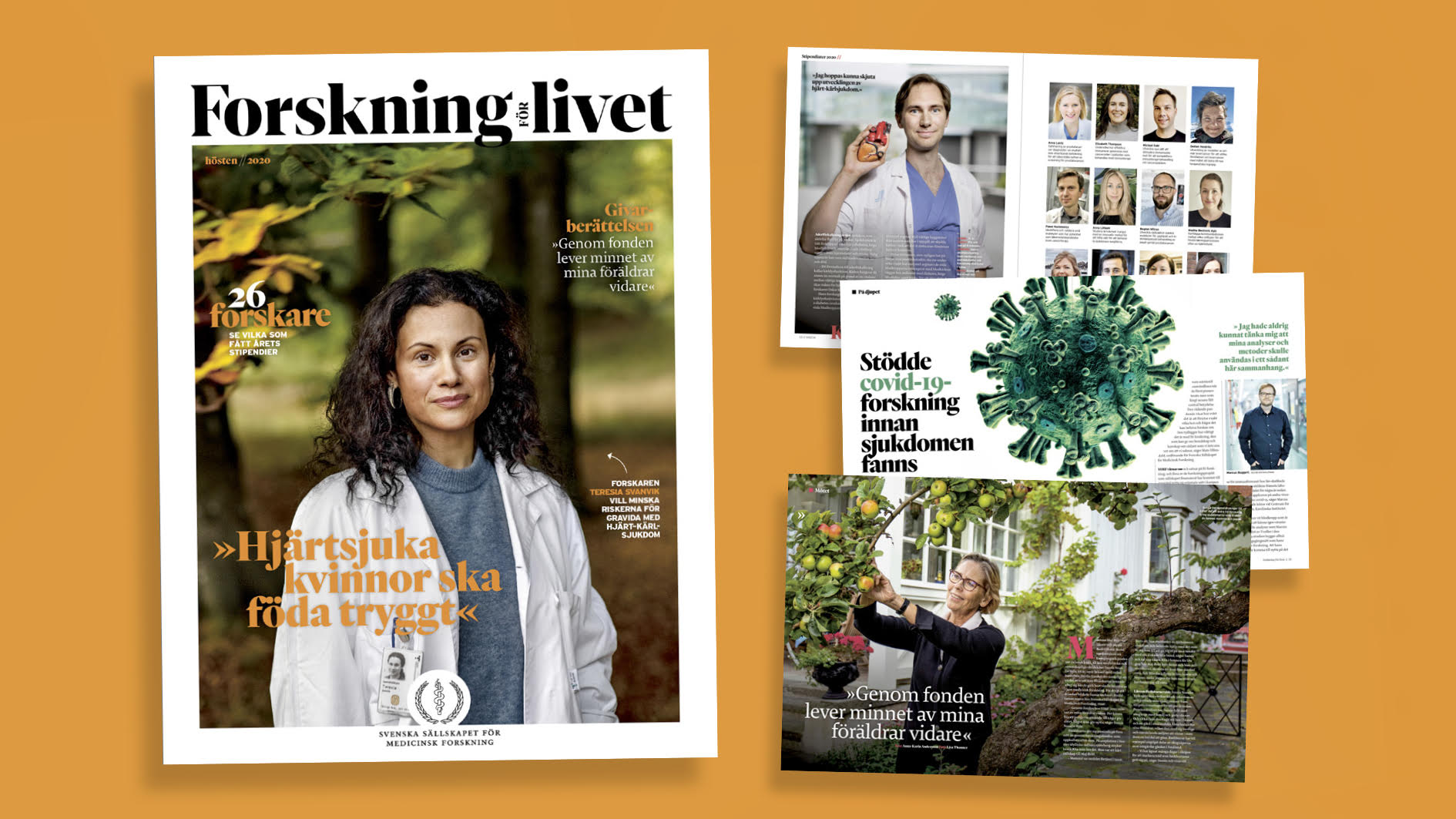 Forskning för livet, hösten 2020, från SSMF Bilder: SSMF
